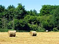Bales near Collins End Common - geograph.org.uk - 26746.jpg