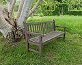 Bankje onder meerstammige berk (Betula). Locatie Hortus Haren 01.jpg