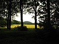 Barley field, Seafield Estate Cullen - geograph.org.uk - 1516784.jpg