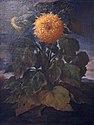 Bartolomeo bimbi, giraole, 1721.JPG