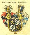 Bayern Siebmacher004 - Herzogtum.jpg