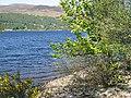 Beach, Loch Rannoch - geograph.org.uk - 829784.jpg