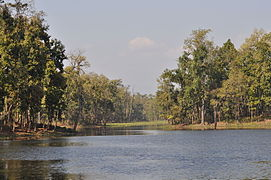 Beeshazar Lake in Chitwan.JPG