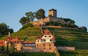 Beilstein - Burg Hohenbeilstein und Unteres Schloss - Ansicht vom Birkenweg mit Abendsonne.jpg