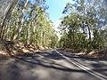 Benandarah NSW 2536, Australia - panoramio (24).jpg