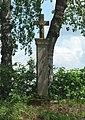 Bettel wayside cross.jpg