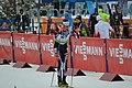 Biathlon European Championships 2017 Individual Men 0763.JPG