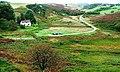 Billira Cottages and Biller Howe Dale - geograph.org.uk - 251849.jpg