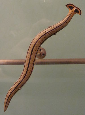 Bipalium - Model of Bipalium strubelli Graff, 1899