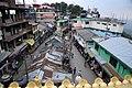 BirG099-Dharamsala.jpg