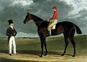 Birmingham (horse) - Birmingham', the Winner of the Great St. Leger Stakes at Doncaster, 1830 by John Frederick Herring, Sr.