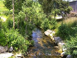 Birs (river) - Image: Birs
