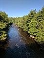 Blackwater Falls State Park WV 19.jpg