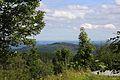 Blick vom Nebelstein auf den Sender Wachberg 2016-08.jpg