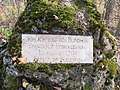 Blindheim Kellerberg östlich-B16 (015).jpg
