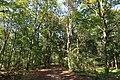 Bois de Boulogne, Paris 16e 3.jpg