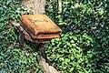 Book of Spells at Stormont Estate -150790 (40530276333).jpg