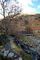 Borrowdale Path - geograph.org.uk - 703565.jpg