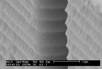 Deep reactive-ion etching - Undulating sidewall of a silicon structure created using the Bosch process