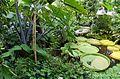 Botanischer Garten Münster - Viktoria-Haus.jpg