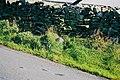 Boundary marker on Gisburn Old Road - geograph.org.uk - 1671745.jpg