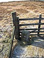 Boundary stone, Cat Law. - geograph.org.uk - 12176.jpg
