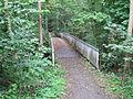 Brücke am Rodenbeker Quellental 1.jpg
