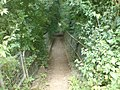 Bridge across Wellow Brook - panoramio.jpg