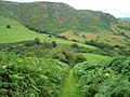 Bridleway - geograph.org.uk - 1439197.jpg