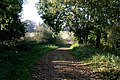 Bridleway to Belvoir Road - geograph.org.uk - 591009.jpg