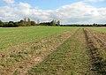 Bridleway to Cooke's Road - geograph.org.uk - 1536794.jpg