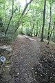 Bridleway to Westrop Green - geograph.org.uk - 975896.jpg
