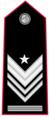 Brigadiere-capo-qualifica-speciale.png