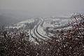 Brno - panoramio - Tomas Lollky (22).jpg