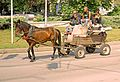 Bulgaria-03103 - Moving Day....... (11051421244).jpg