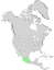 Bursera fagaroides range map 0.png