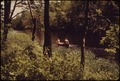 CANOEING ON THE CHARLES RIVER AUDUBON SOCIETY RESERVATION AT NATICK - NARA - 550000.tif