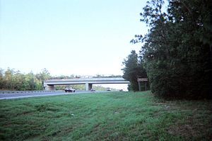 Interstate 75 in Florida - The Cross Florida Greenway bridge over I-75