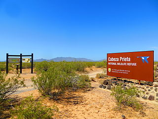 Cabeza Prieta National Wildlife Refuge protected area