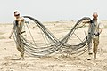 Cable dogs DVIDS58340.jpg