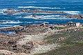 Cabo Silleiro. Galiza S6.jpg