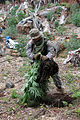California Counterdrug Task Force supports Operation Yurok 140723-Z-QO726-013.jpg
