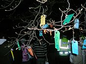 Calton Wish Tree.JPG