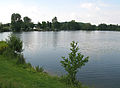 Cappy étang 1.jpg