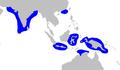 Carcharhinus hemiodon distmap.png