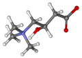 Carnitine ball-and-stick.png