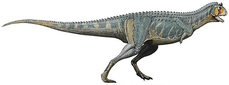 Fichier:Carnotaurus DB 2 white background.jpg
