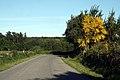 Carretera hacia Anafreita - panoramio.jpg