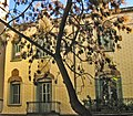 Casa Joan Barata, c. Sant Pere (II).jpg