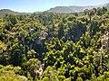 Cascada La Cortadera.jpg
